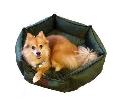ძაღლის საწოლი